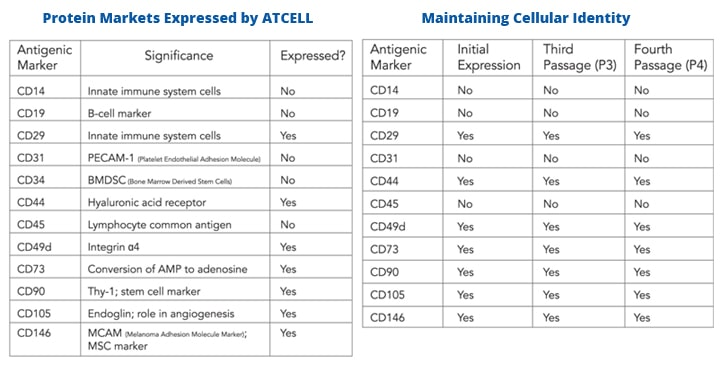 atcell-science